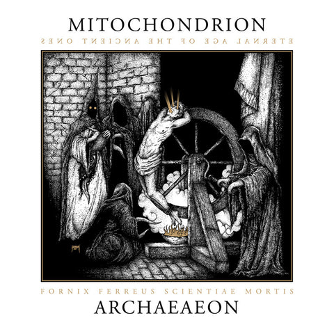 Mitochondrion ‎– Archaeaeon 2xLP