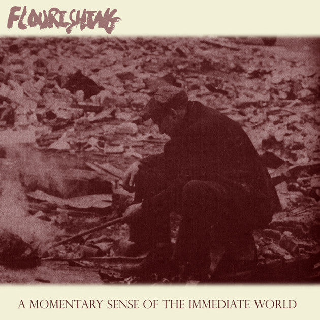 Flourishing - A Momentary Sense Of The Immediate World CD
