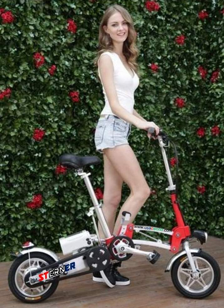 Beautiful Like a Flower - Sterner Electric Bikes