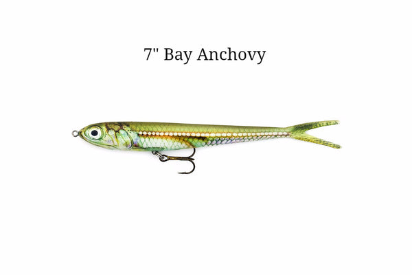 "7"" Bay Anchovy realistic soft plastic lure"
