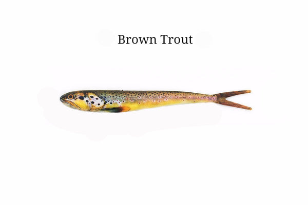 "7"" Brown Trout realistic soft plastic lure"