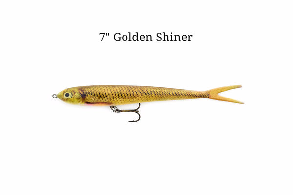"7"" Golden Shiner realistic soft plastic lure"