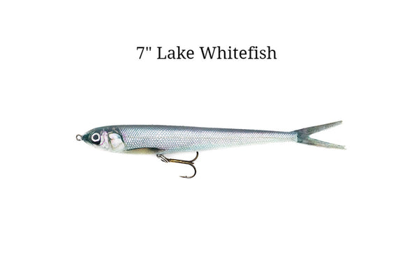 "7"" Lake Whitefish realistic soft plastic lure"