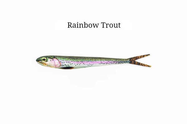 "7"" Rainbow Trout realistic soft plastic lure"