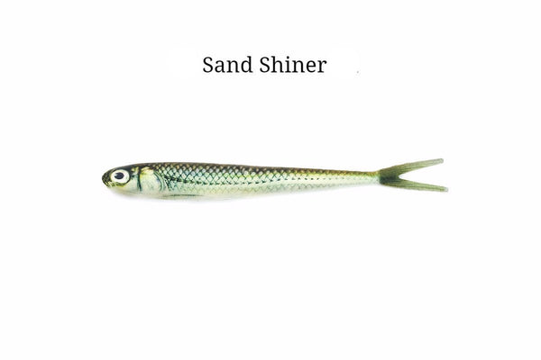 "7"" Sand Shiner realistic soft plastic lure"