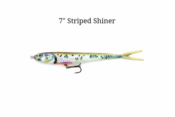 "7"" Striped Shiner realistic soft plastic lure"