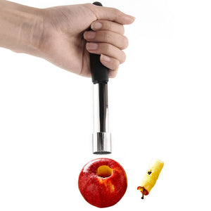 1 PC Stainless Steel Fruit Core Seed Remover Idiyka