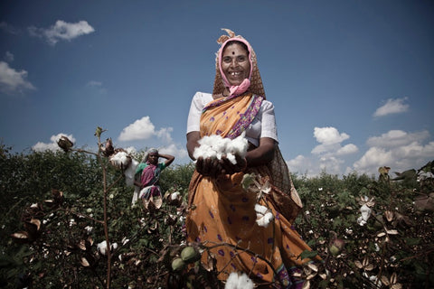 Organic Cotton Farmer in India
