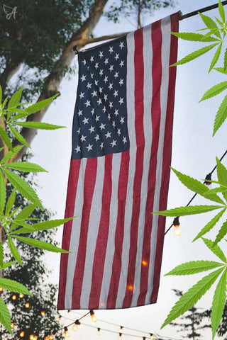 American USA flag cannabis