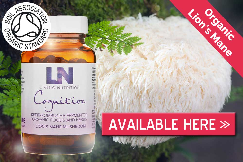 Available here lion's mane