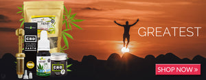 Best CBD oil collection banner