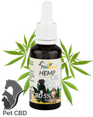 CBD for pets cats dogs