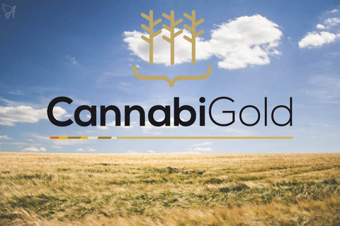 CannabiGold UK