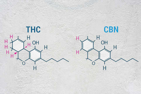 Cannabinoids THC and CBN