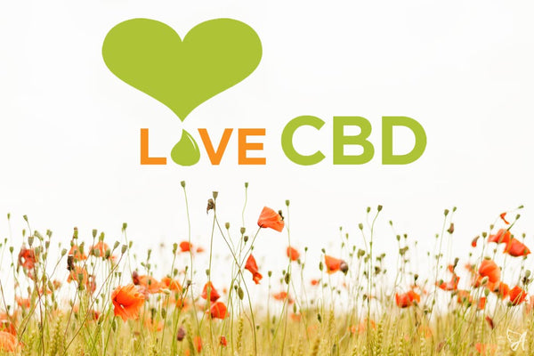 Image result for LOVE CBD images