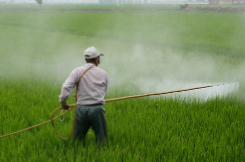 Man spraying herbicides