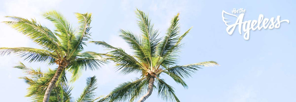 Palms in wind for the Ageless