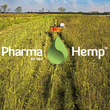 Pharmahemp CBD oil UK