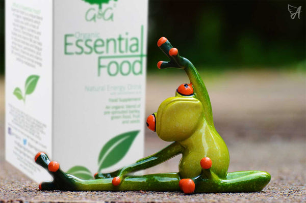 Top Superfoods in 2017 frog and Essential Food for the Ageless
