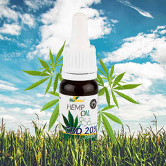 pure, full-spectrum, organic CBD oil