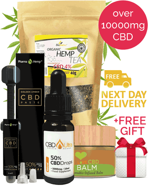 Strongest CBD Bundle