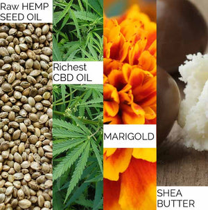 Therapeutic CBD Balm Hemptouch Ingredients