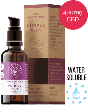 Water Soluble CBD – The Original Alternative