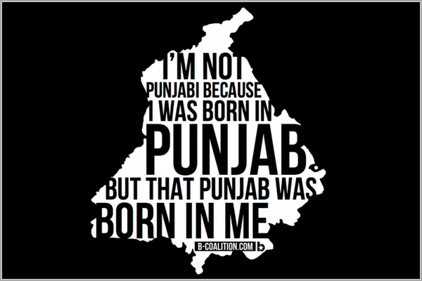 Punjab In Me (T-Shirts/Hoodies/Crewnecks)
