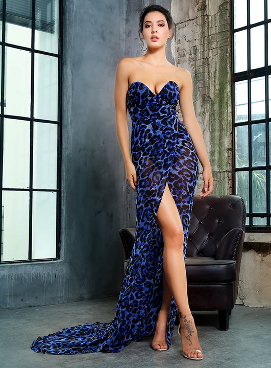 Women's V-Neck Long Dress With Leopard Print