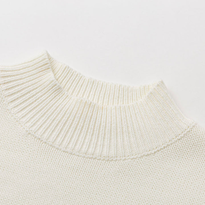 Women's Autumn/Winter High-Neck Knitted Sweater