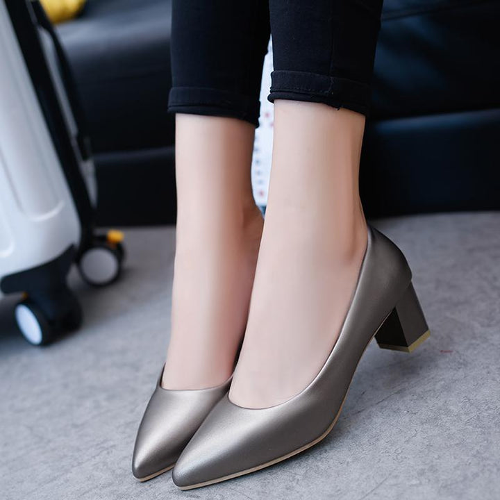 Women's Spring Pointed High-Heeled Shoes
