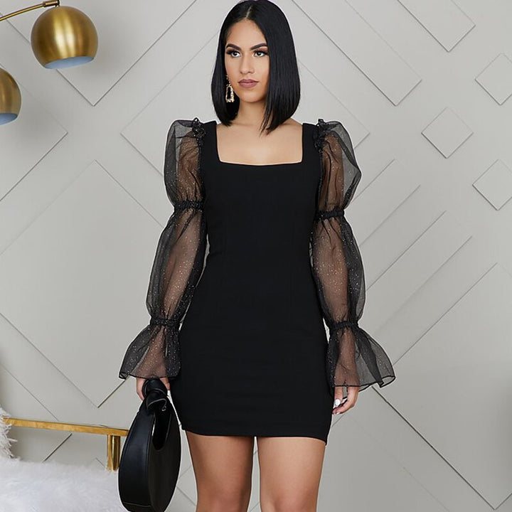 Women's Mesh Long Sleeve Slim Mini Dress With Square Neck