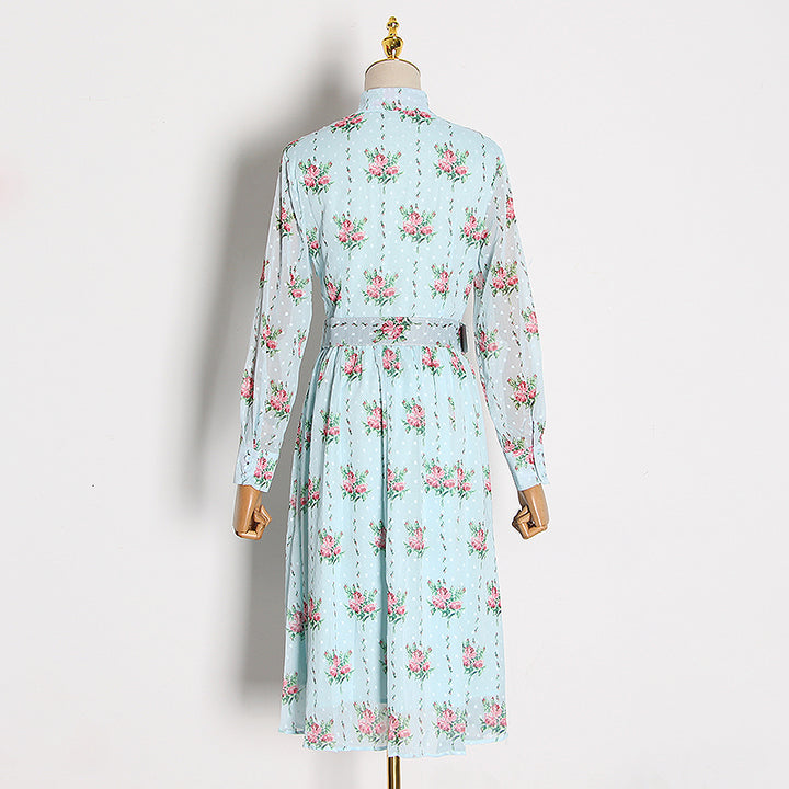 Women's Spring Casual A-Line Long Dress With Print