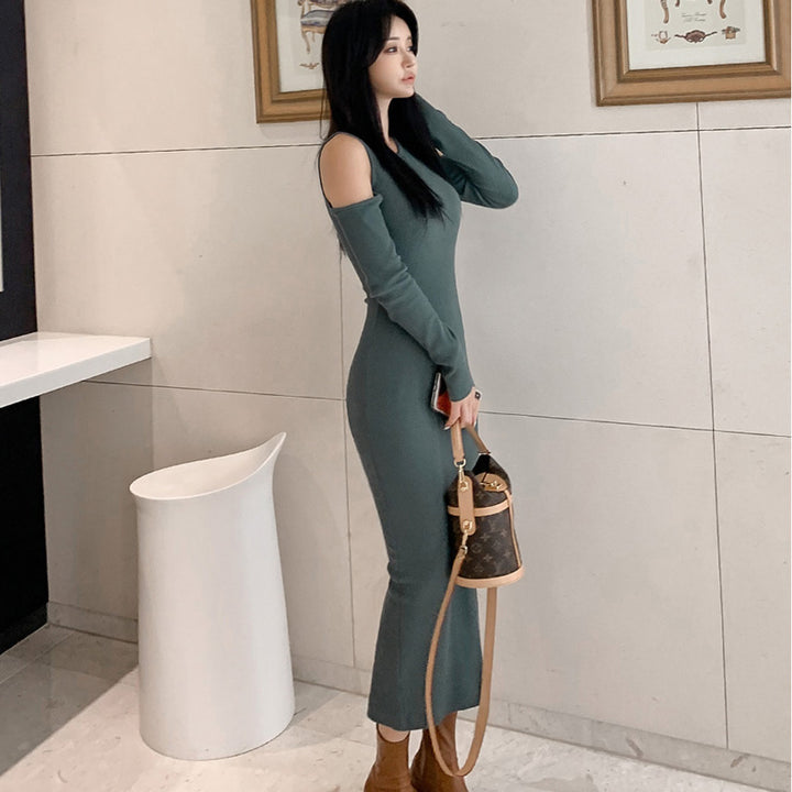 Women's Spring/Autumn Sweater Sheath Long Dress