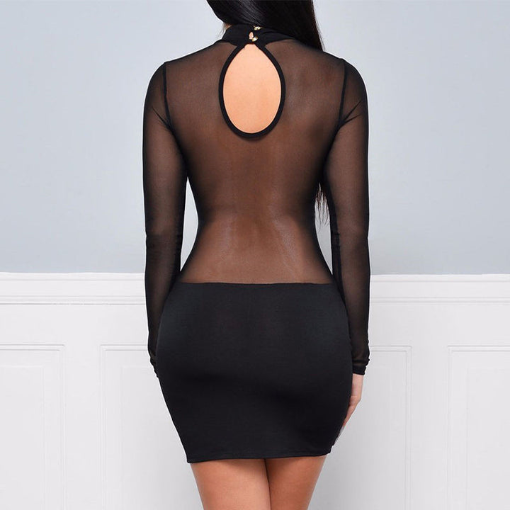 Women's Spring/Autumn Long-Sleeved Mesh Bodycon Mini Dress