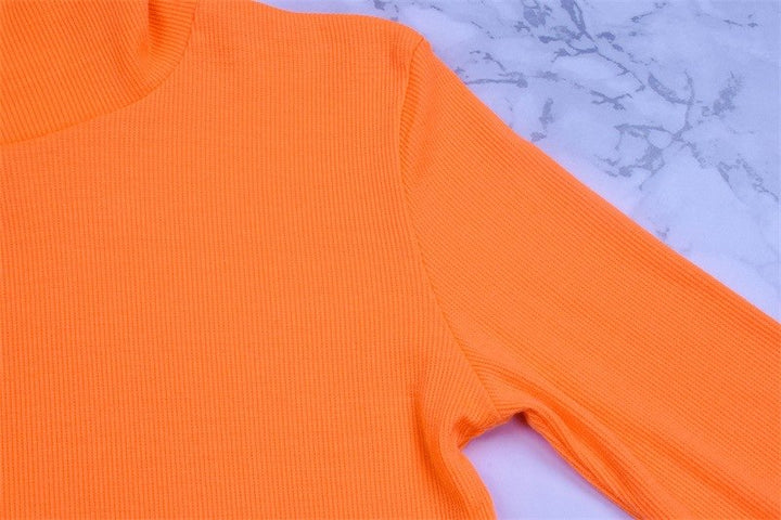 Women's Autumn/Winter Long-Sleeved Cropped T-Shirt With Turtleneck