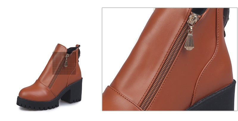 Women's Spring/Autumn High-Heeled Platform Ankle Boots