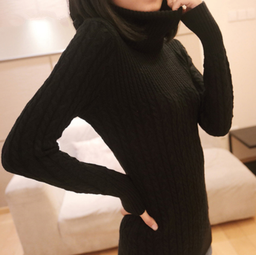 Fashion Women's Casual High Neck Sweater