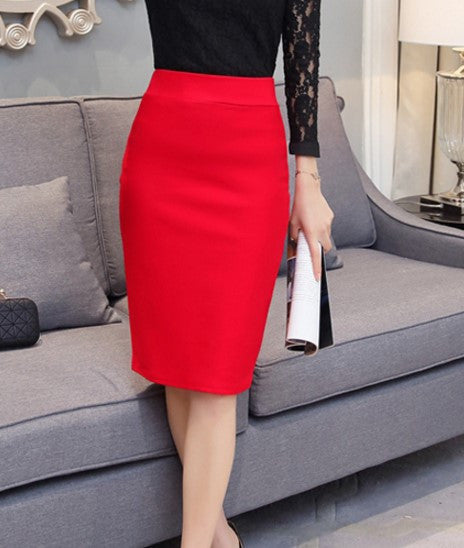 Summer & Autumn Women's High Waist Slim Skirt - Zorket