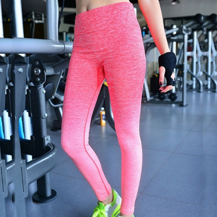Women's High Elastic Breathable Leggings - Zorket