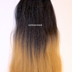 CATFACE HAIR BLACK CARAMEL BLONDE OMBRE JUMBO BRAIDING HAIR