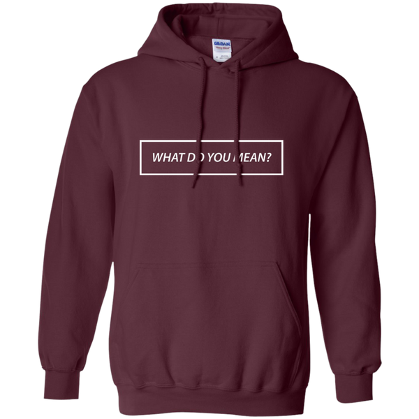 What Do You Mean? Hoodie
