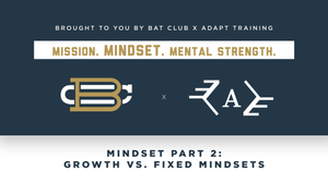 Webinar: Mindset Part 2 - Growth vs Fixed Mindsets