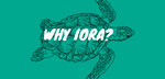 Why choose Iora naturals?