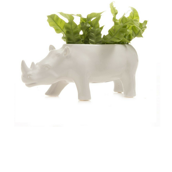 Rhino Planter (more colors)