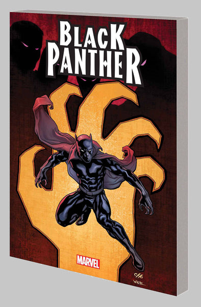 Black Panther By Hudlin TP Vol. 01: Complete Collection