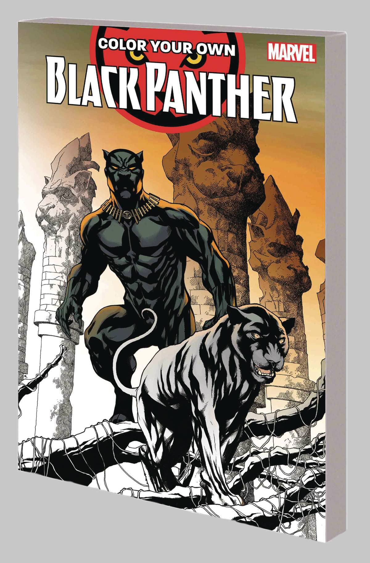 Colour Your Own Black Panther