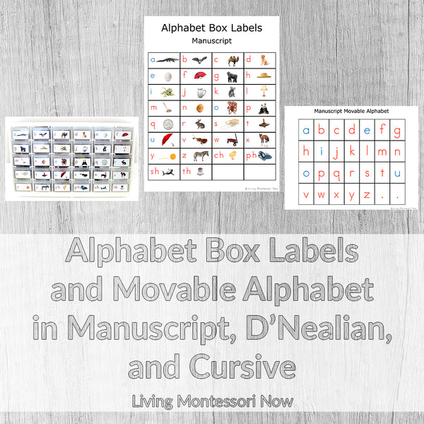 Alphabet Box Labels and Movable Alphabet in Manuscript, D'Nealian, and Cursive