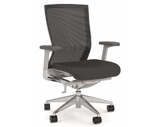 OLG Balance Executive Mesh Back Chair Grey Executive Chairs Dunn Furniture - Online Office Furniture for Brisbane Sydney Melbourne Canberra Adelaide