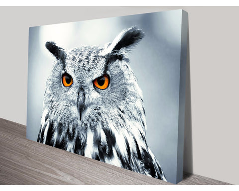 Under Observation Wall Art Impact Imagery Dunn Furniture - Online Office Furniture for Brisbane Sydney Melbourne Canberra Adelaide
